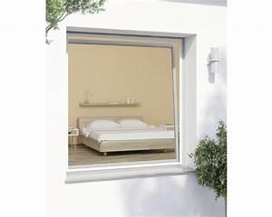 Fenster Kaufen Bei Hornbach : insektenschutz fenster plus weiss 140x150 cm kaufen bei ~ Watch28wear.com Haus und Dekorationen