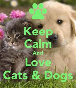 Keep Calm And Love Cats & Dogs Poster | Grace | Keep Calm ...