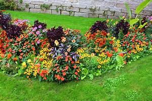 Plantes Vivaces Pour Massif : roses du jardin ch neland un beau massif de plantes ~ Premium-room.com Idées de Décoration