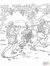 Coloring Bible Pages Joshua Caleb Story Israelites Canaan Spies Printable Para Crafts Jordan River Sheets Returning Sunday Supercoloring Twelve Stories sketch template