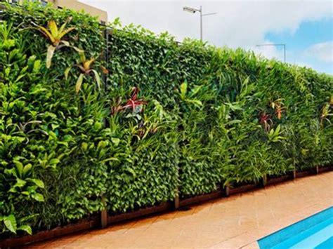 vertical garden   narrow land  home ideas
