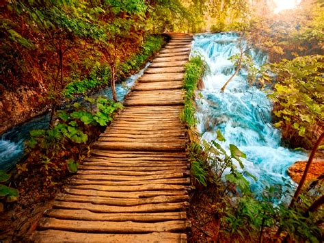 Free download Beautiful Nature Wallpaper Download Live HD ...