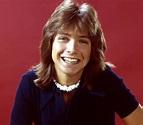 David Cassidy, 1970s teen idol, has died at 67 - NBC News