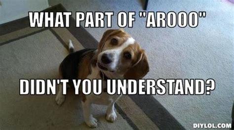 Beagle Memes - beagle meme resized beagle back talk meme generator what part of arooo didn t you dogs