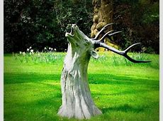 large tree stump ideas How Make a Stump Attractive by