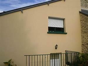 Nettoyer Terrasse Carrelage Eau De Javel : comment nettoyer un mur avec de l 39 eau de javel la r ponse est sur ~ Melissatoandfro.com Idées de Décoration
