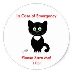 cat stickers emergency cat sticker decal zazzle