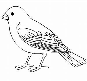 cute sparrow coloring sheet for kidz - Coloring Point