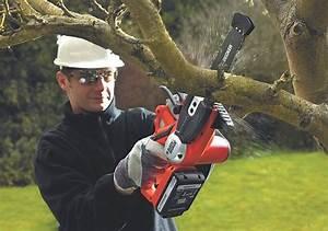 Elagueuse Black Et Decker : outils jardin ~ Premium-room.com Idées de Décoration