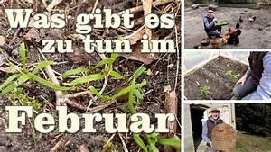 Was Ist Im Februar Im Garten Zu Tun : was gibt es bei mir im februar im garten zu tun youtube ~ Lizthompson.info Haus und Dekorationen