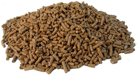 quot it must be the pellets quot the feed room