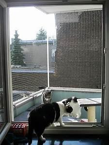 Fenstersicherung Ohne Bohren : balkont r und fenster mit katzennetz ohne bohren katzennetz profi ~ Eleganceandgraceweddings.com Haus und Dekorationen