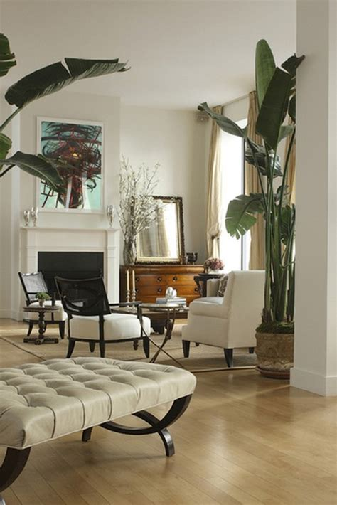 interior designs  indoor trees messagenote