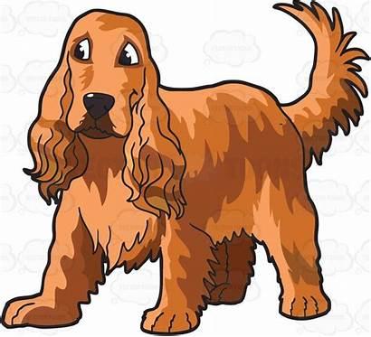 Spaniel Cocker Vector Clipart Animal Dog Carnal