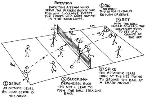 volleyball court positions google search sports