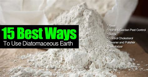 ways    natural diatomaceous earth