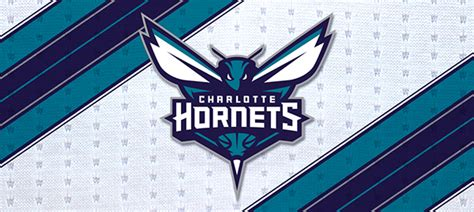 Start your search now and free your phone. Charlotte Hornets iPhone Wallpaper - WallpaperSafari