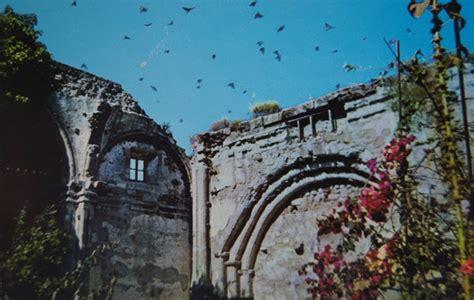 mission san juan capistrano courts cliff swallows hopes