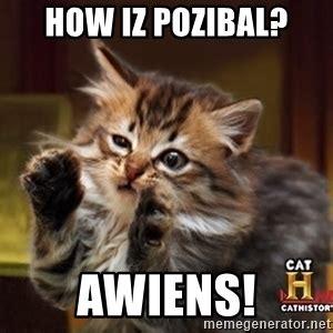 Cat Alien Meme - hairballs alien implants ancient aliens cat interview meme generator