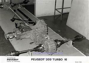 205 Turbo 16 Série 200 A Vendre : les publicit s automobiles ~ Medecine-chirurgie-esthetiques.com Avis de Voitures