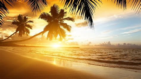 beach sunset wallpaper android apps google play