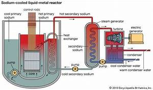Nuclear Reactor  Device
