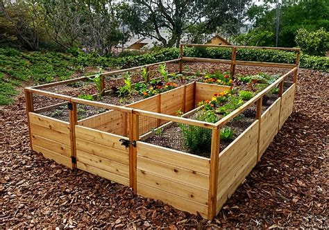 cedar raised garden bed 8 x12 outdoor living today