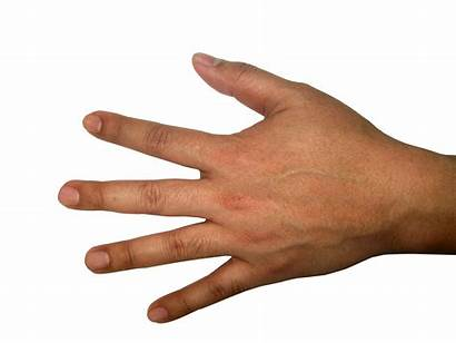 Hand Hands Transparent Background Finger Icon Five