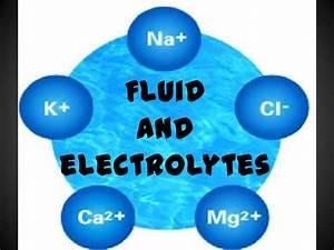 Fluid And Electrolytes Kochi Full