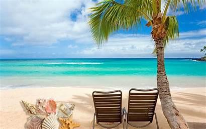 Beach Shells Desktop Wallpapers 1freewallpapers Benefits Conchiglie