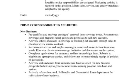 Personal Lines Insurance Resume Exles by Insurance Description For Resume On Sle