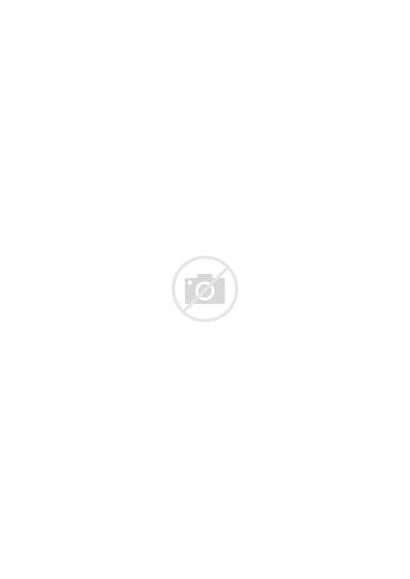 Hamburger Ingredients Flying Burgers Fastfood Detroit Metro