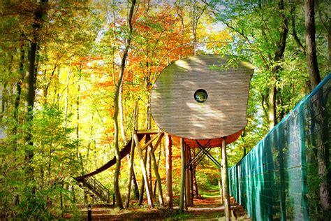 Wolfcenter Dörverden Baumhaus by Baumhaushotel Niedersachsen Tree Inn In D 246 Rverden