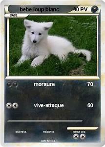 Bébé Loup Blanc : pok mon bebe loup blanc morsure ma carte pok mon ~ Farleysfitness.com Idées de Décoration