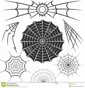 11 Cool Spider Web Designs Images - Spider Web Tattoo ...