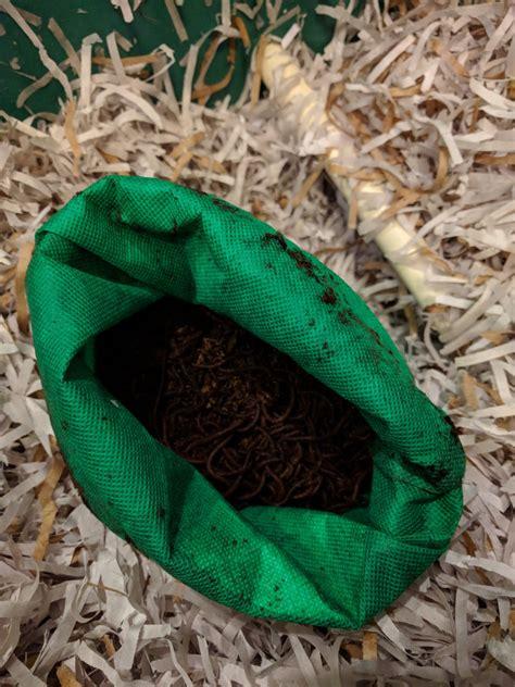 worm composting worms farm