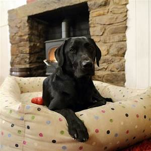 best dog beds for large breeds dog beds and costumes With best dog beds for large breeds