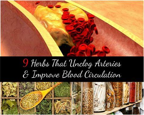 herbs  unclog arteries improve blood circulation