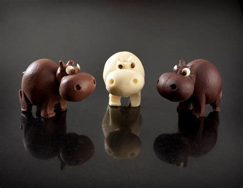 hipster hippos   doubt eat chocolate