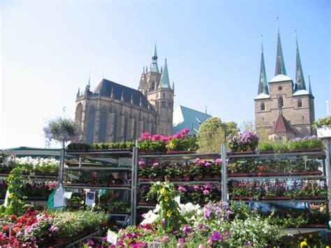 Gartenbau In Thüringen  68 Mai 2016  26 Blumen Und