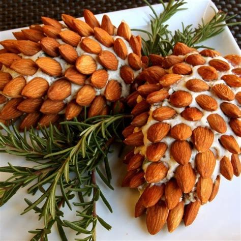 christmas decorated appetizer ideas 16 tasty appetizer recipes decorated in colors style motivation