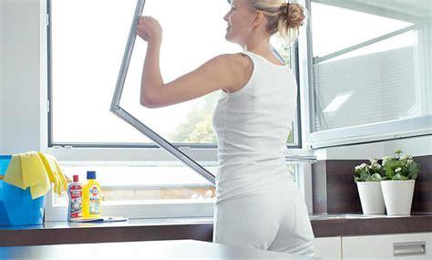 Wie Putze Ich Fenster by Fenster Putzen Selbst De