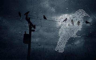 Raven Wallpapers Backgrounds Desktop Ravens Dark Computer