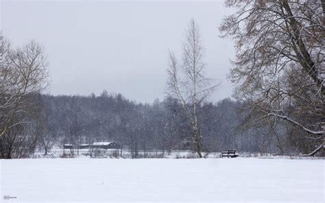 Skrīveru dendroloģiskais parks ziemā (3 foto) - Latvijas ...