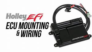 Holley Efi Ecu Mounting  U0026 Wiring