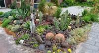 lovely cactus garden design Rock Garden Design Ideas - [peenmedia.com]