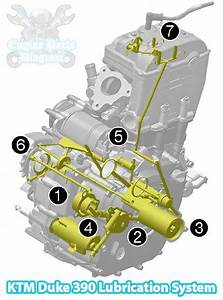 2013 Ktm Duke 390 Engine Oil Lubrication System Diagram