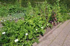 Gemüse Pflanzen Was Passt Zusammen : mischkultur und fruchtfolge diese pflanzen vertragen ~ Lizthompson.info Haus und Dekorationen