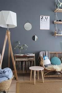 Petit Salon Cosy : best 25 salon cosy ideas on pinterest cosy room deco salon and canape salon ~ Melissatoandfro.com Idées de Décoration