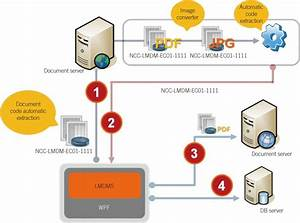schematic flow diagram of the laboratory medicine document With adobe document management system